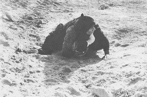 أم احوازية تحاول أن تحمي طفلها من شظايا القذائف بجسدها أيام الحرب الإيرانية العراقية(1980-1988).